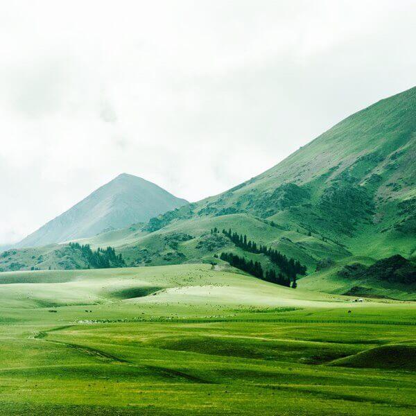 平原と山画像